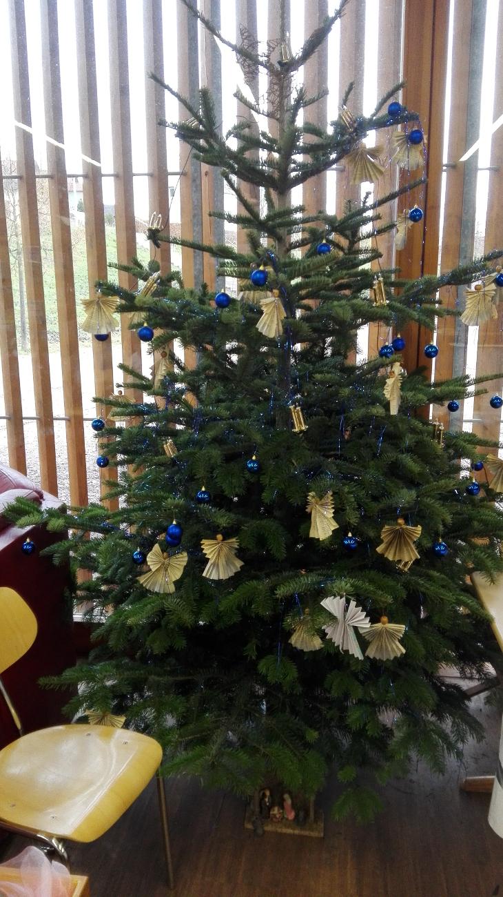 Wer Hat Den Tannenbaum Erfunden.Weihnachtszeit Lesenische
